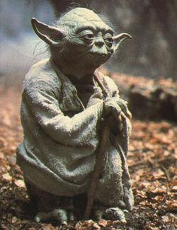 Интересные факты о джедаях  250px-Yoda