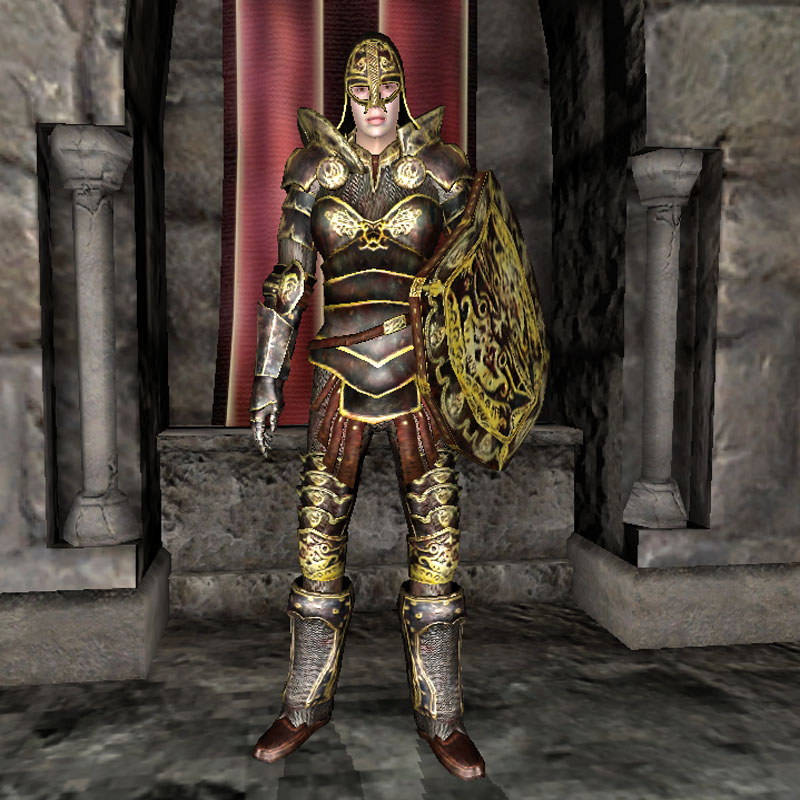 Home images battle mage armour the battle mage armour the facebook