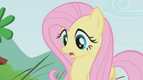 Fluttershy looks surprised S