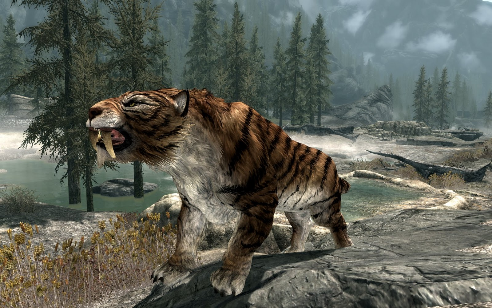 Tigre dai denti a sciabola the elder scrolls wiki - Pagine da colorare nativo ...