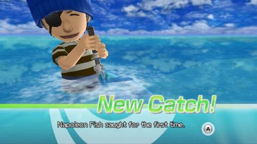 Napoleon fish wii fishing resort wiki for Fishing resort wii