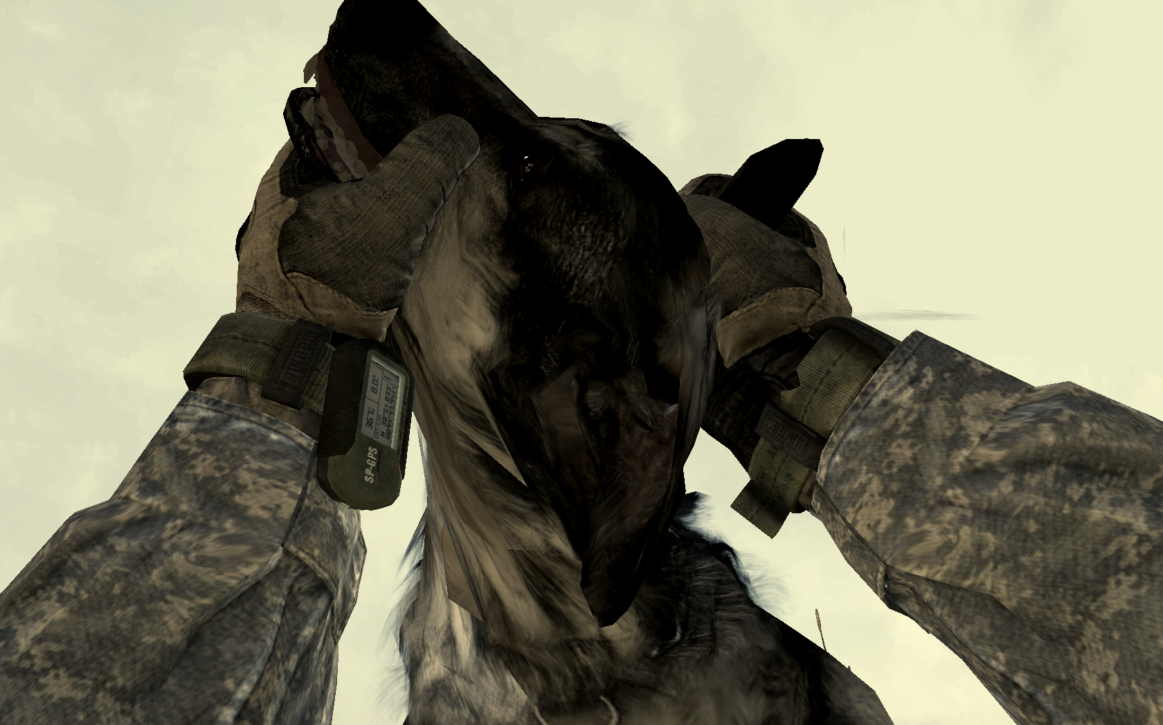 Player_countering_an_attack_dog_MW2.png