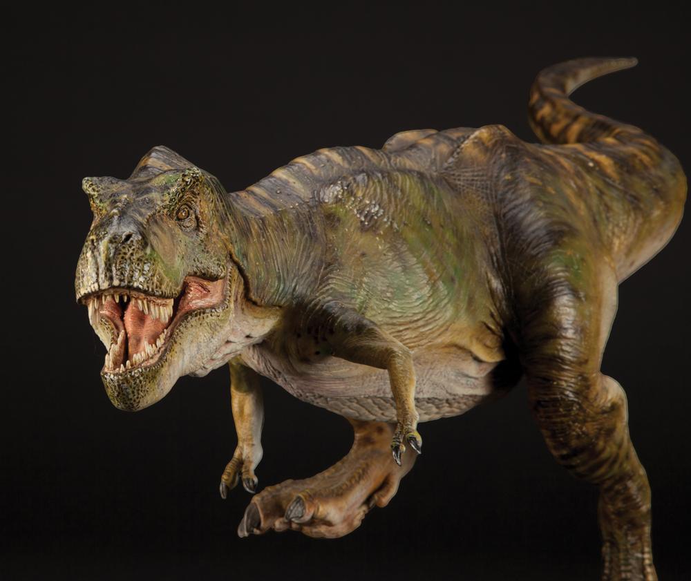 Jurassic Park Toys Spinosaurus vs Trex Park Toys Spinosaurus vsJurassic Park Toys Spinosaurus Vs Trex