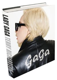 Lady Gaga X Terry Richardson-book