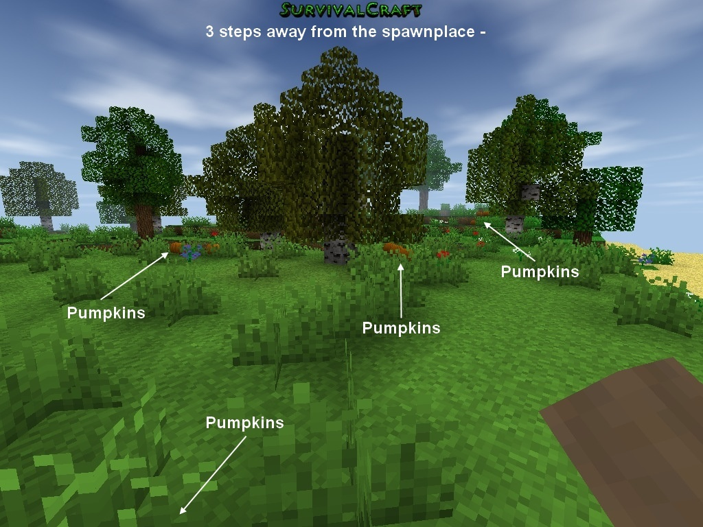 general attributes spawn biome forest resources pumpkins wood