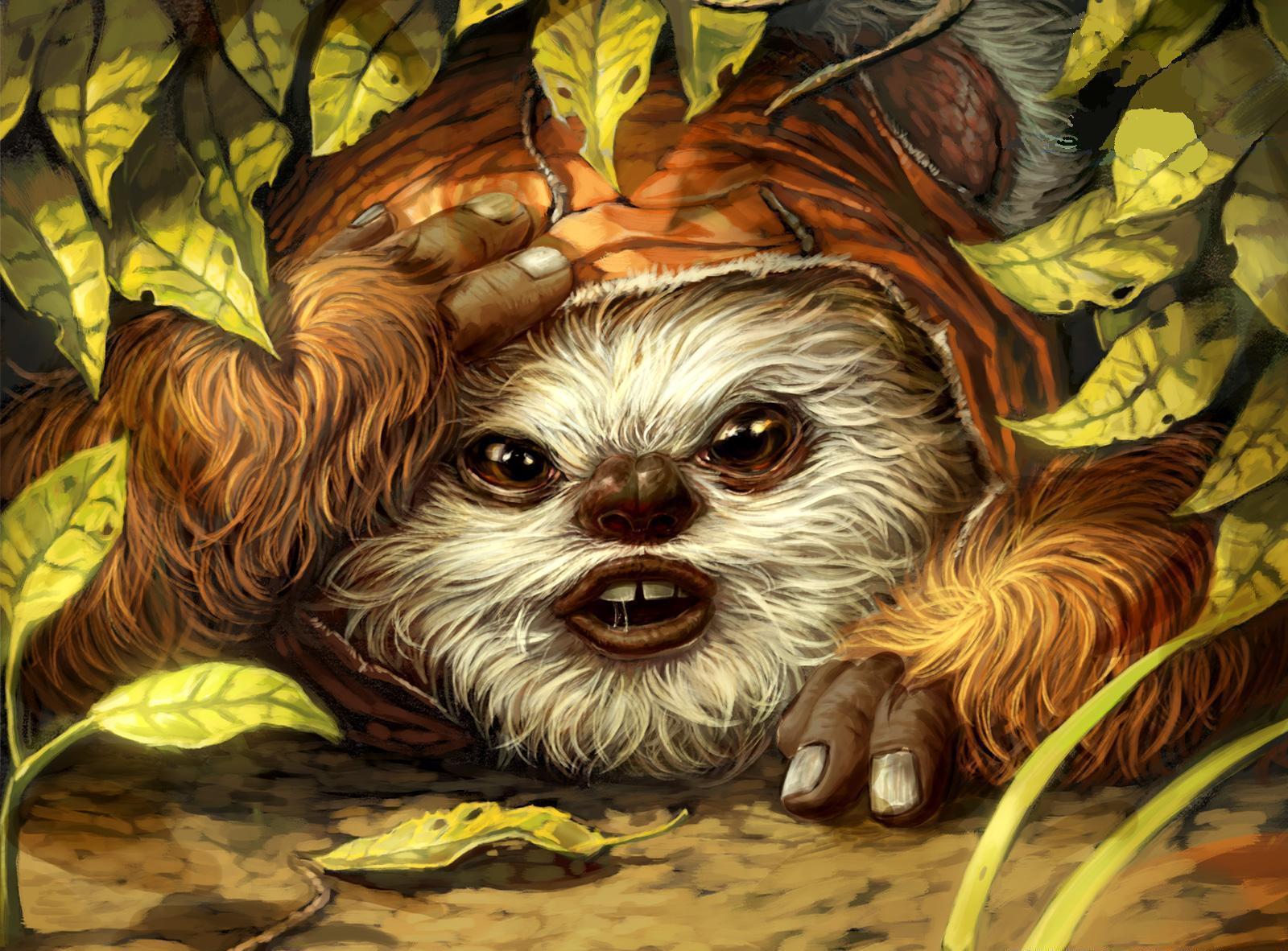 Ewok wookieepedia the star wars wiki - Ewok wallpaper ...